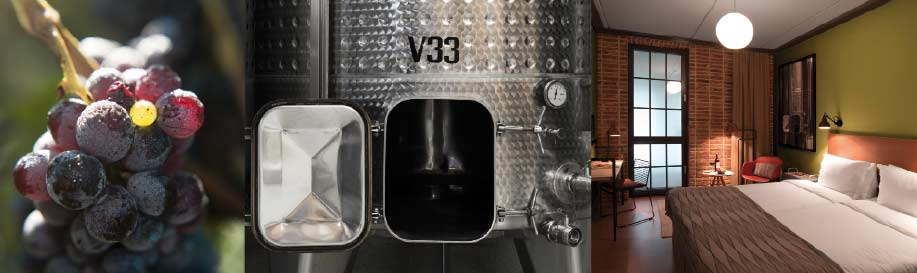 Vinet-VIS2-1